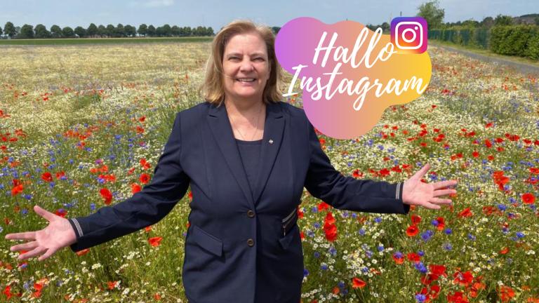 Hallo Instagram